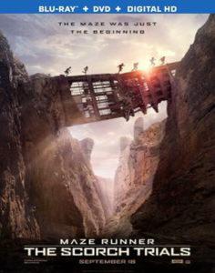 Maze Runner: Prueba De Fuego (2015) Full HD 1080P Latino - 2015