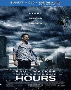 Horas Desesperadas (2013) HD 1080p Latino ()