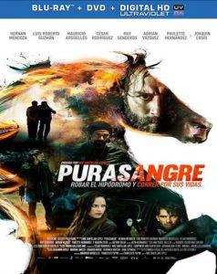 Purasangre (2016) HD 1080P Latino - 2016