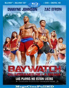 Baywatch: Guardianes De La Bahía (2017) Full HD 1080p Latino - 2017