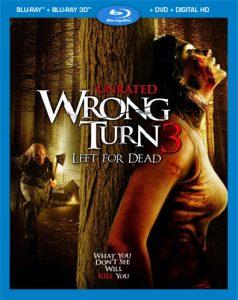 Camino Hacia El Terror 3: Abandonado Para Morir (2009) Full HD 1080P Latino - 2009
