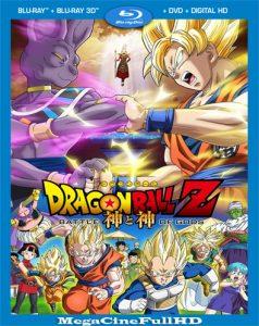 Dragon Ball Z: la batalla De Los Dioses (2013) Full HD 1080P Latino ()
