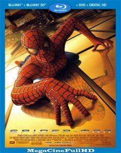 El Hombre Araña (2002) Full HD 1080P Latino - 2002
