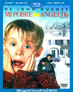 Mi Pobre Angelito (1990) Full HD 1080P Latino ()