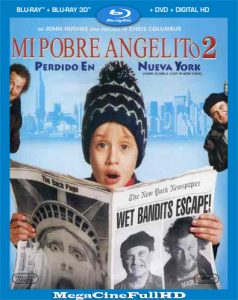 Mi Pobre Angelito 2 (1992) Full HD 1080p Latino ()