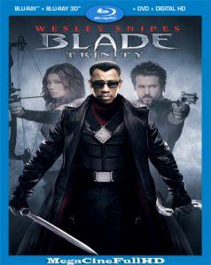 Blade: Trinity (2004) Extended Full HD 1080P Latino - 2004