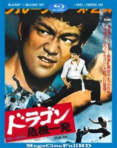 El Gran Jefe (1971) HD 1080P Latino ()