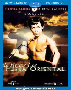 Furia Oriental (1972) HD 1080P Latino - 1972