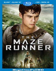 The Maze Runner: Correr o Morir (2014) Full HD 1080P Latino - 2014