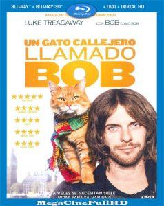 Un Gato Callejero LLamado Bob (2016) HD 1080P Castellano - 2016