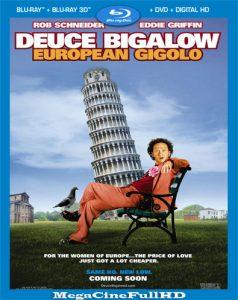 Gigoló Por Accidente En Europa (2005) HD 1080p latino ()
