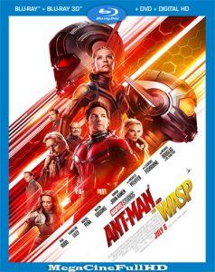 Ant-Man Y La Avispa (2018) Full HD 1080P Latino - 2018