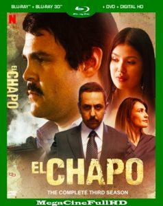 El Chapo Temporada 3 HD 1080P Latino - 2018