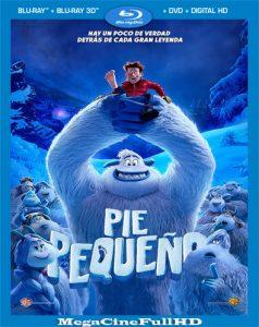 Pie pequeño (2018) Full HD 1080P Latino - 2018
