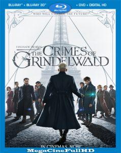 Animales Fantásticos: Los Crímenes De Grindelwald (2018) Full 1080P Latino - 2018