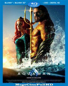 Aquaman (2018) IMAX Full 1080P Latino - 2018