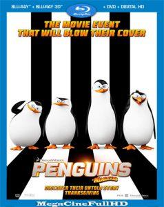 Los Pingüinos De Madagascar (2014) Full 1080P Latino ()