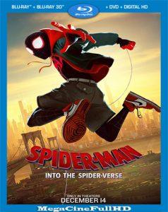 Spider-Man: Un Nuevo Universo (2018) Full 1080P Latino - 2018