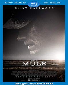 La Mula (2018) Full 1080p Latino ()