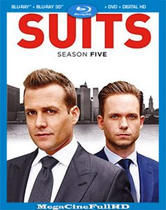 Suits Temporada 5 HD 1080p Latino ()