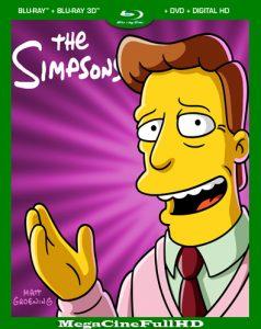 Los Simpson Temporada 30 (2019) HD 1080P Latino ()