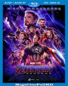 Avengers: Endgame (2019) [Open Matte] Full 1080P Latino Dual ()