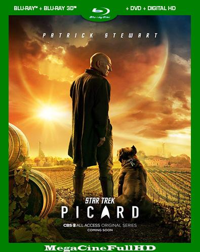 Star Trek: Picard Temporada 1 HD 1080P Latino
