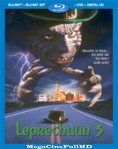 El Duende Maldito 3 (1995) HD 1080P Latino ()