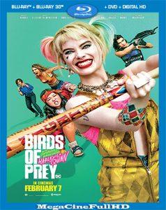 Aves De Presa (2020) Full 1080P Latino ()