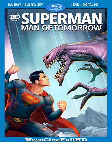 Superman: Man Of Tomorrow (2020) BRRIP Full 1080P Latino
