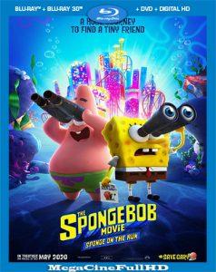 Bob Esponja: Al Rescate (2020) HD 1080P Latino - 2020